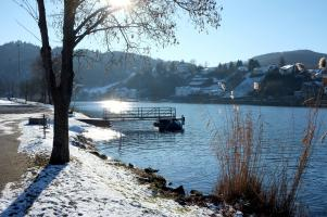 Winter am Moselufer