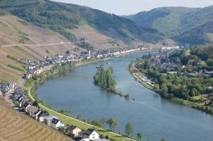 Zell Mosel 2