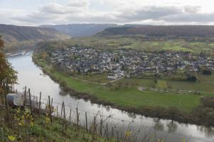 Mosel Herbst Pünderich